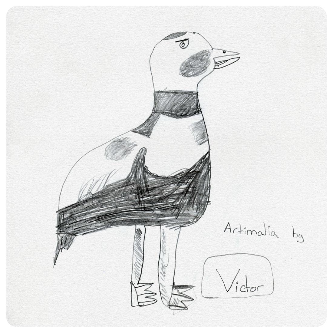 pato del labrador victor jimenez artimalia