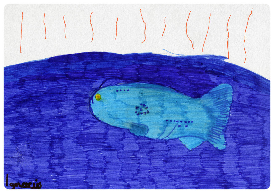 igancio diaz pez de tecopa artimalia