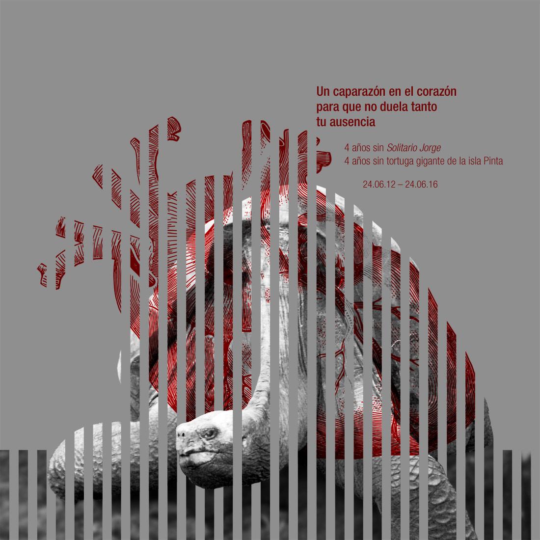 colaboracion artimalia.org amaya oyon solitario jorge