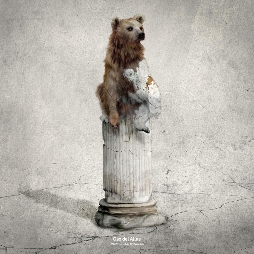 Homenaje al oso del Atlas