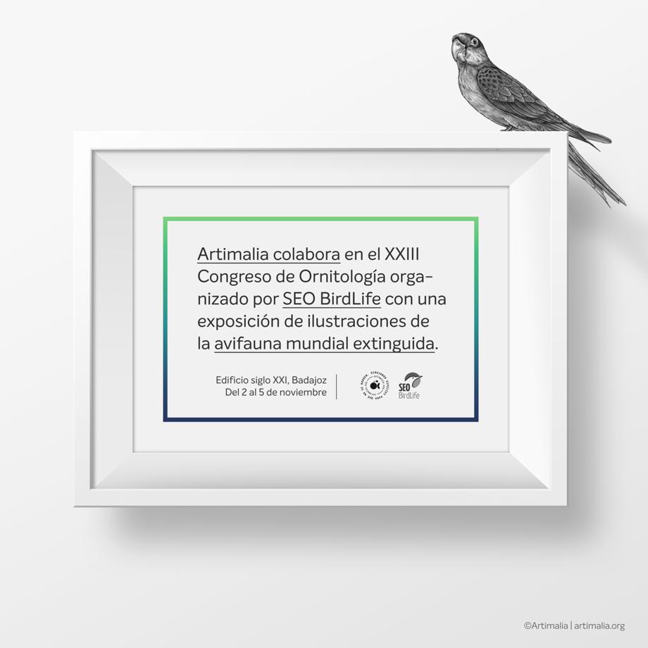 promo artimalia exposicion xxiii cngreso nacional de ornitologia