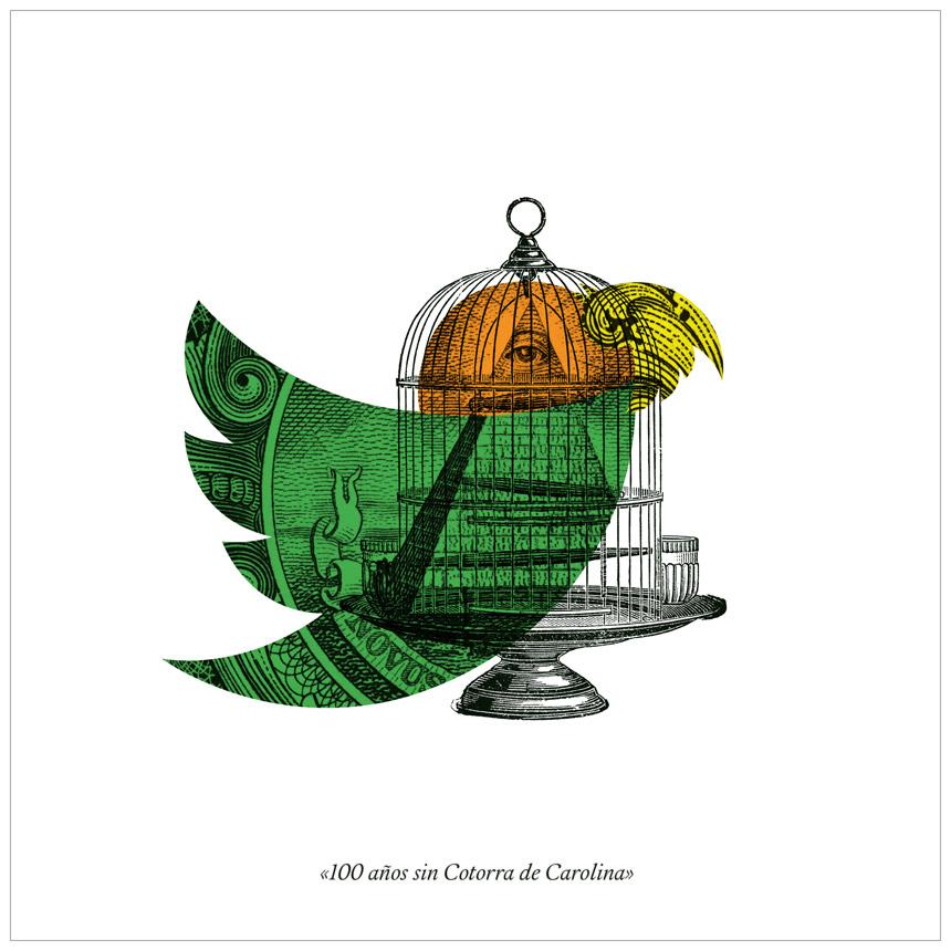 El d'a de... la cotorra de Carolina Juan Carlos Aguado Ruiz