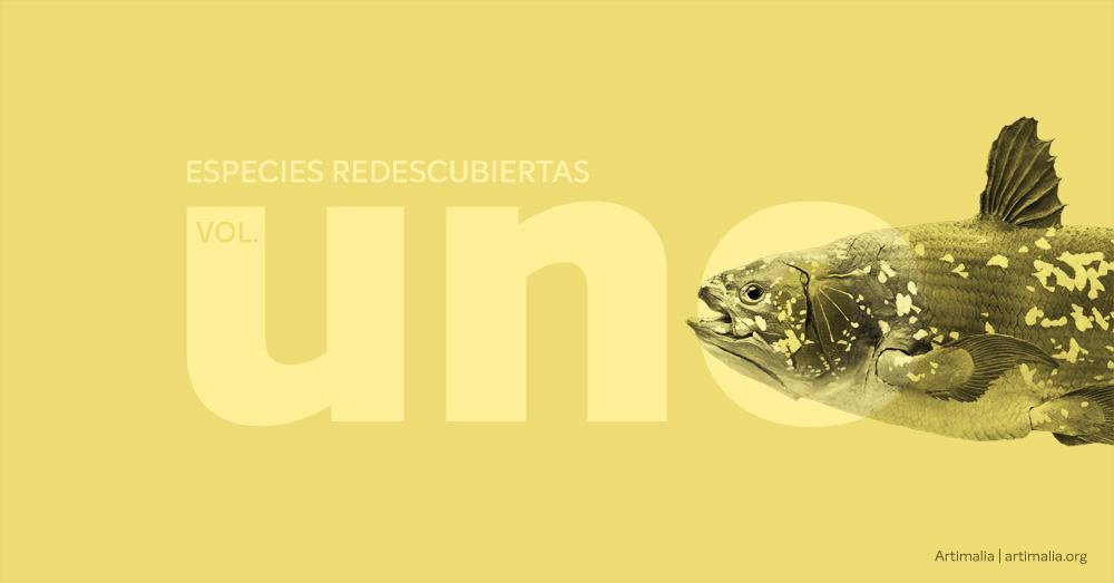 Especies redescubiertas vol. 1 | artimalia.org