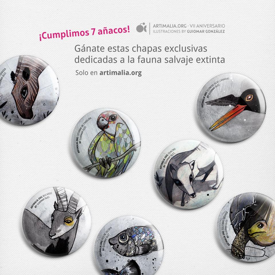 blog_portada_artimalia_vii_aniv_chapas