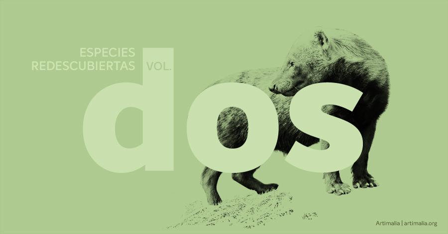 Especies redescubiertas vol. 2 | artimalia.org