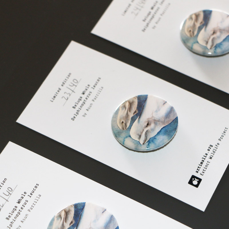 Beluga Limited Pins, by ©Artimalia