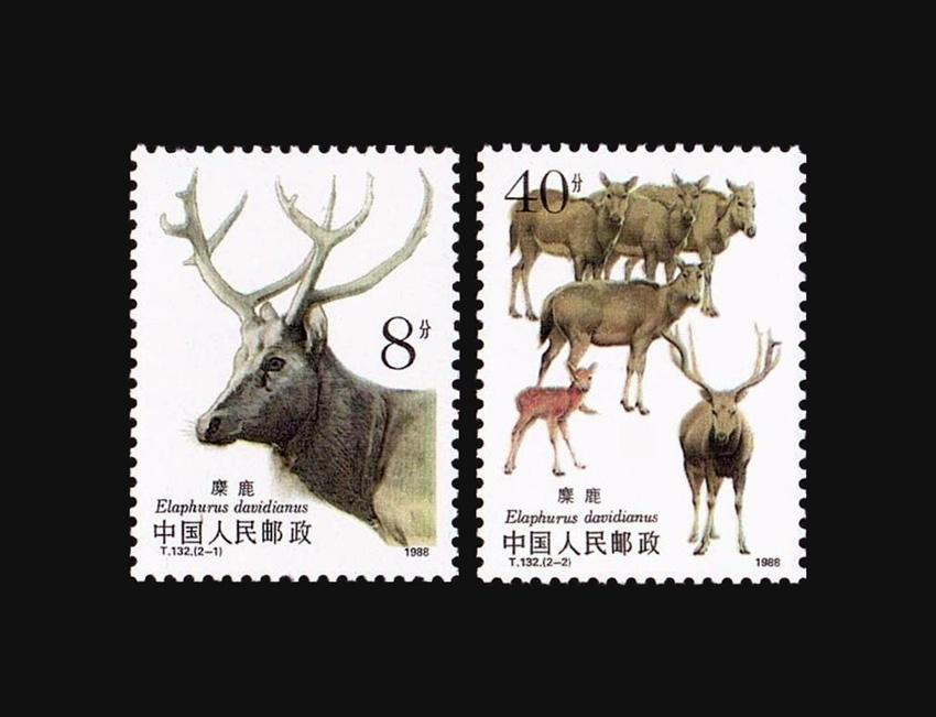 Blog Artimalia, sellos postales ciervo del padre David