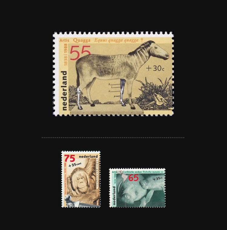 Blog Artimalia, sello postal quagga